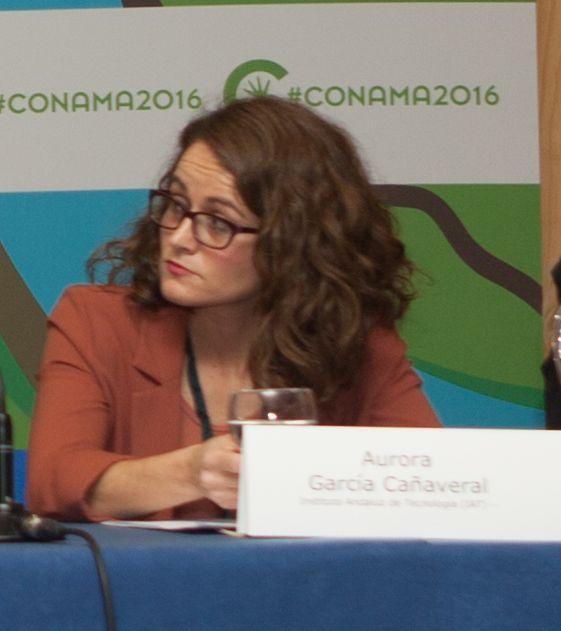 Aurora García Cañaveral