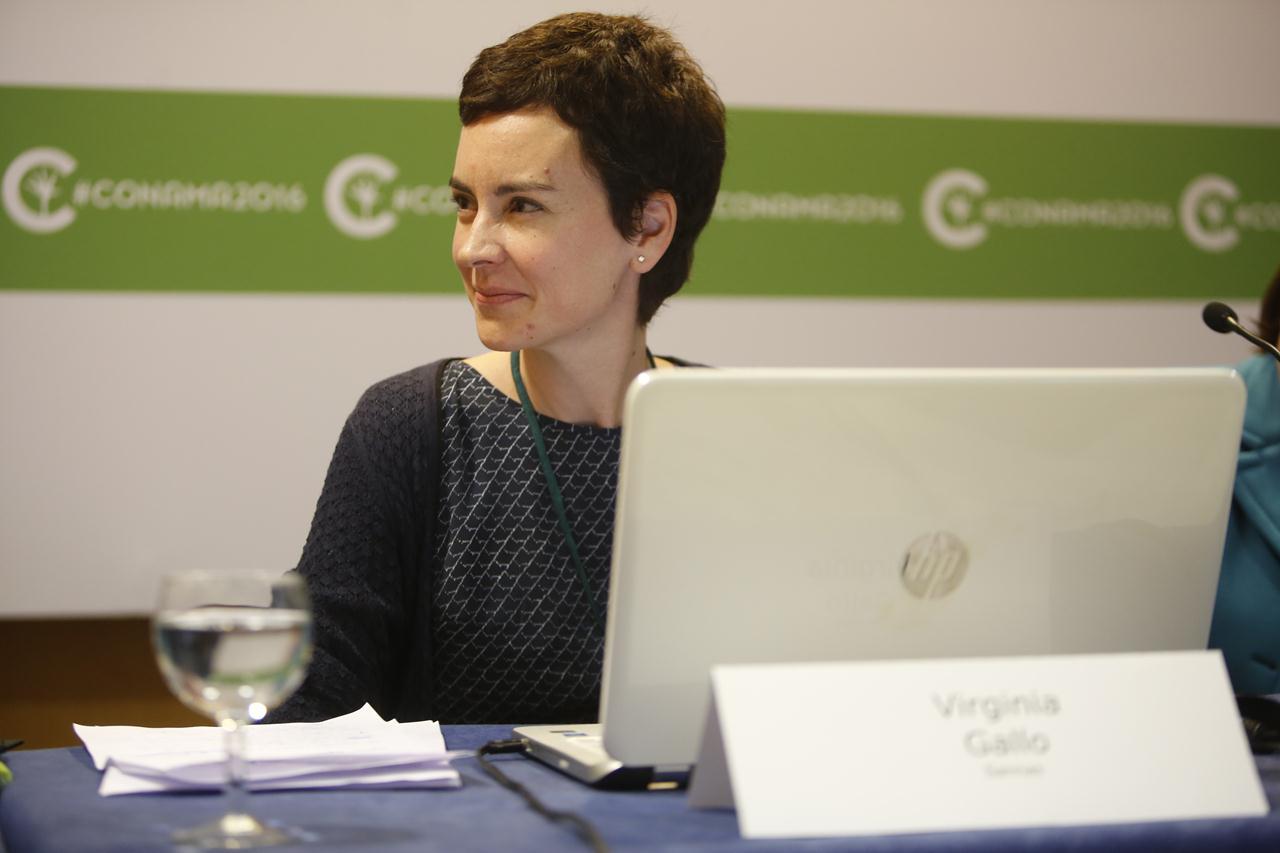Virginia Gallo