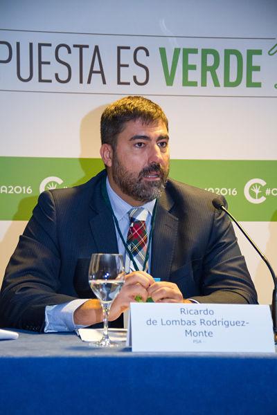 Ricardo  de Lombas Rodriguez-Monte