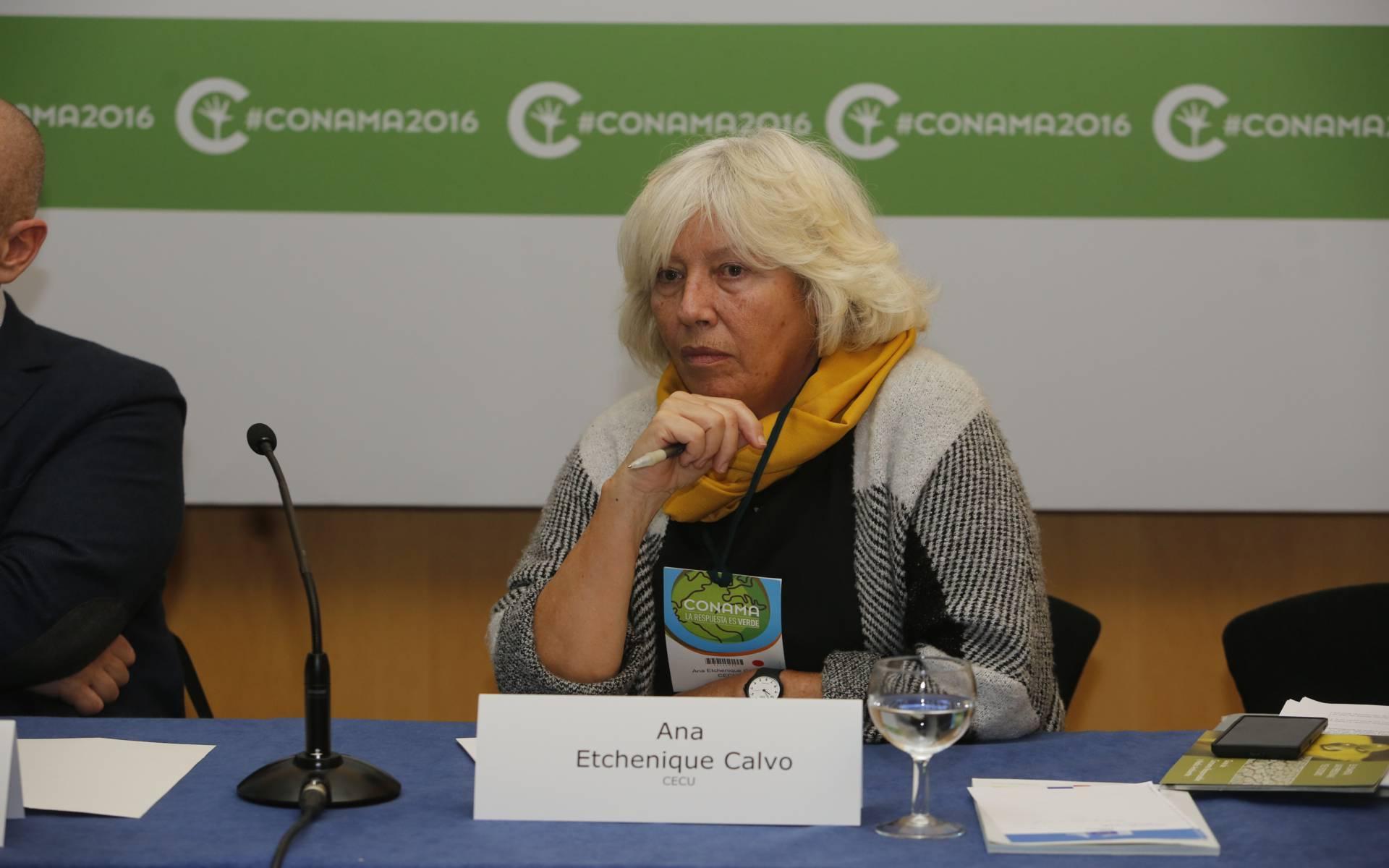 Ana Etchenique Calvo
