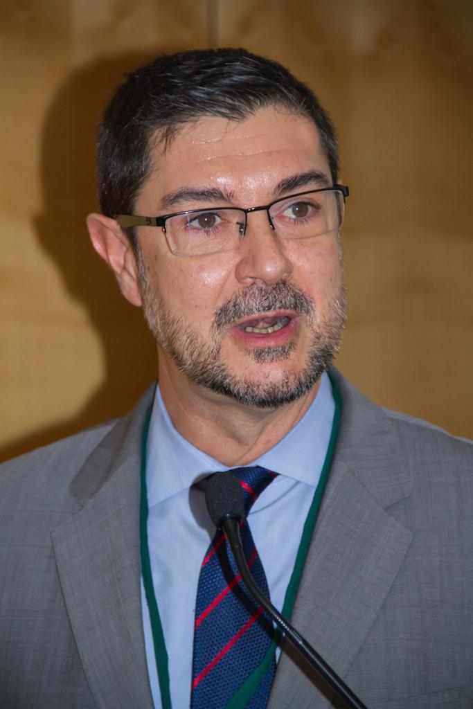 Juan Ávila Francés